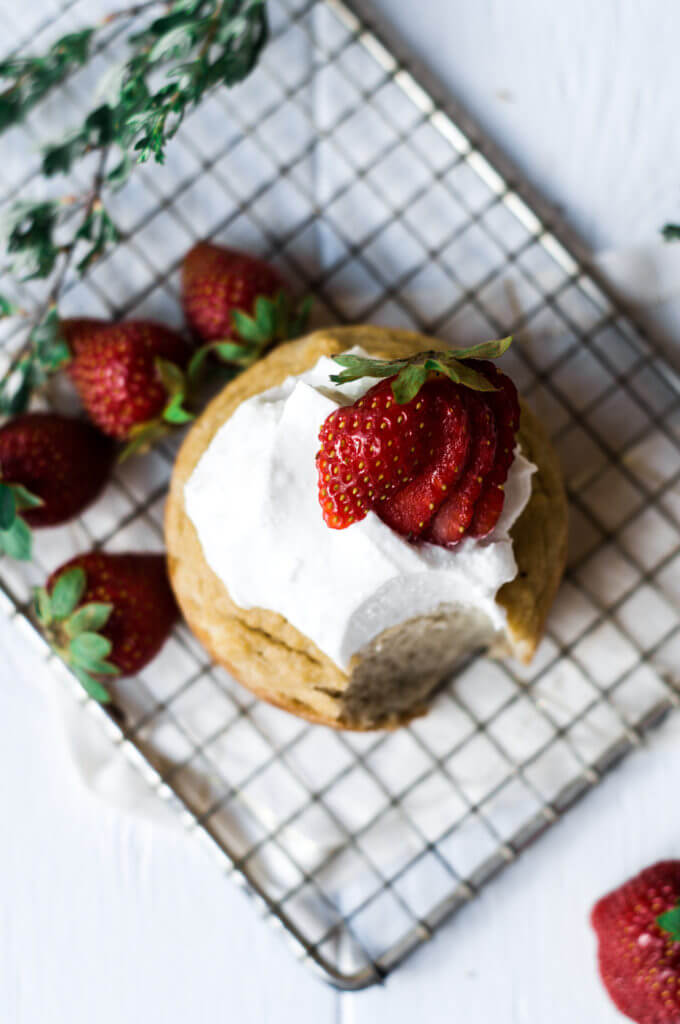 This soft grain free paleo mug muffin is made in a few minutes. Topped with lushes whipped cream and fresh strawberries, this easy to make recipe for strawberry shortcake mug muffin is a delicious time saver and makes for an easy breakfast, dessert, or snack. This recipe is sugar free and sweetened with stevia liquid.