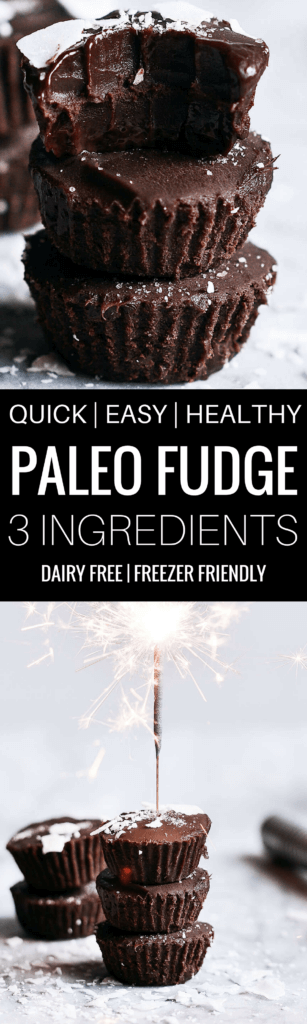 Ready for some chocolate goodness?! These easy paleo treats are deliciously rich and creamy. Made without dairy, these fudge bites are vegan… And dare I say, good for you? Ha ha, I once saw that pin on Pinterest about chocolate coming from a green plant; therefore, it was a vegetable. Let's just go with that theory for today, huh? Paleo fudge. Best paleo fudge recipe. Best dairy free fudge recipe. Easy fudge recipe Easy chocolate fudge. Paleo dessert ideas. Best paleo snacks. Best paleo desserts. Vegan fudge recipe. Easy vegan fudge recipes. Dairy free dessert ideas.